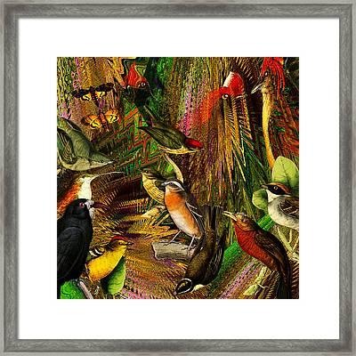 Solar Birds Of Paris Framed Print
