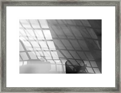 Solar Cat I 2013 1 Of 1 Framed Print