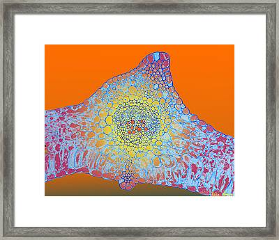 Solar Cells Framed Print