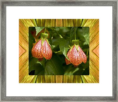 Framed Print featuring the photograph Solar Lantern by Bell And Todd