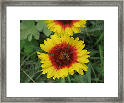 Soldier On Fire Framed Print