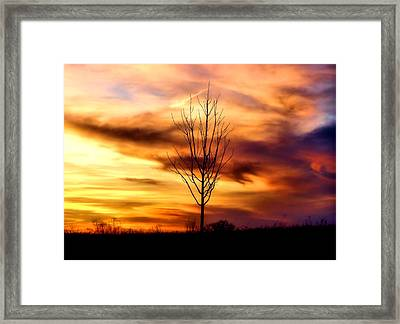Sole Searching Framed Print by Karen M Scovill