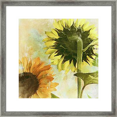 Soleil II Framed Print by Mindy Sommers