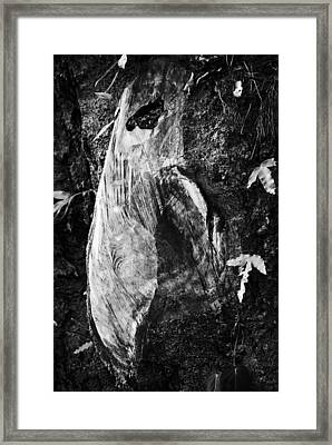 Solemnity Bw Framed Print
