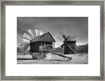 Solitaire Framed Print by Gabriela Insuratelu