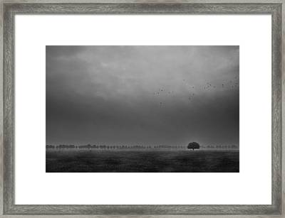 Solitaire Framed Print by Michiel Hageman