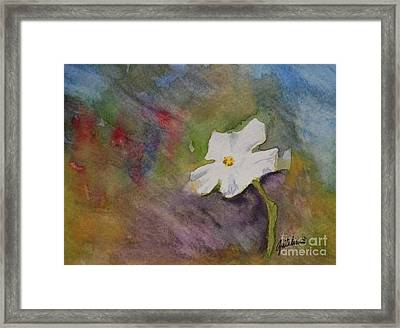 Solitary Flower Framed Print by Gretchen Bjornson