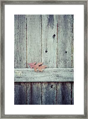 Solitary Leaf On Fence Framed Print