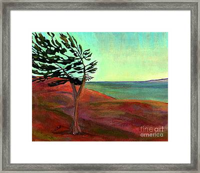 Solitary Pine Framed Print by Claire Bull
