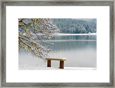 Solitary Snowscape Framed Print