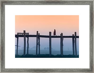 Solitary Walk Framed Print