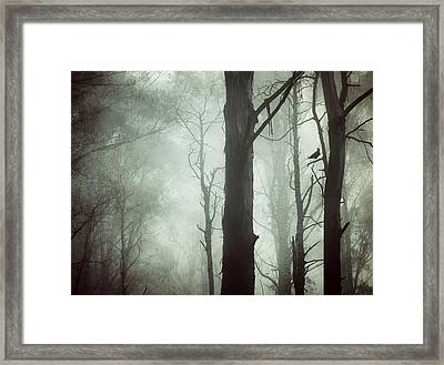 Framed Print featuring the photograph Solitude by Amy Weiss