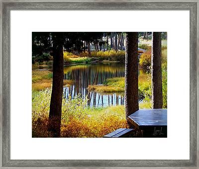 Solitude At Donner Pass Framed Print by S Lynn Lehman