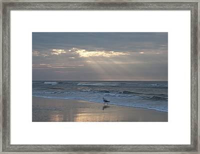 Solitude Framed Print by Bill Cannon