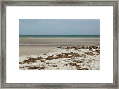 Framed Print featuring the photograph Solitude By The Seashore by Michelle Wiarda