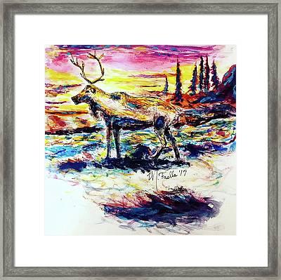 Solitude Caribou Framed Print