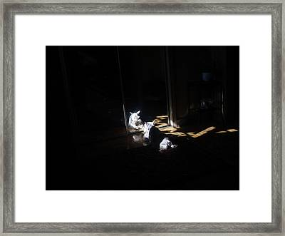 Solitude Framed Print by Dale Augustson