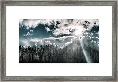 Solitude Forest. Sunychne, 2016. Framed Print