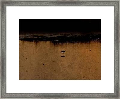 Solitude Framed Print by Jennifer A Garcia