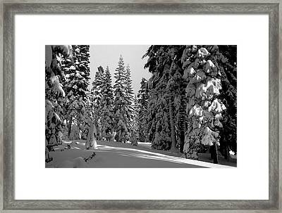 Solitude Framed Print by Kathy Yates
