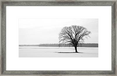 Solitude Framed Print by Levin Rodriguez