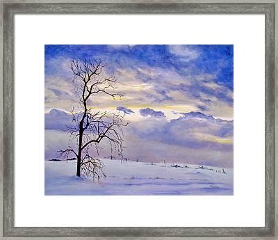 Solitude Framed Print by Marina Petro