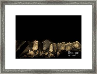 Framed Print featuring the photograph Solitude by Olimpia - Hinamatsuri Barbu