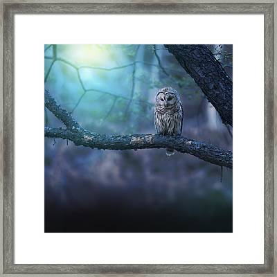 Solitude - Square Framed Print