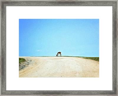 Framed Print featuring the digital art Solitude by Sue Collura