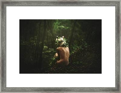 Solitude  Framed Print by TJ Drysdale