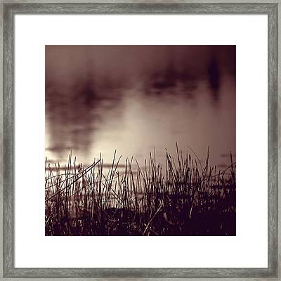 Framed Print featuring the photograph Solitude by Trish Mistric