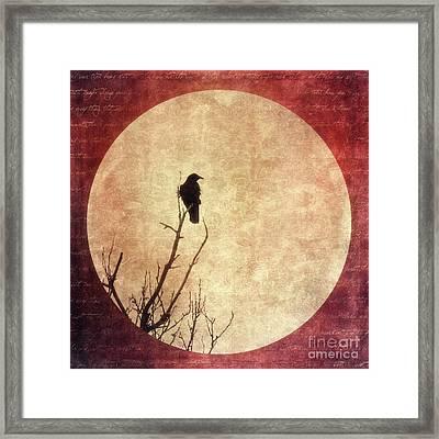 Solivagant Framed Print by Priska Wettstein