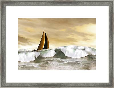 Solo Framed Print by Carol and Mike Werner