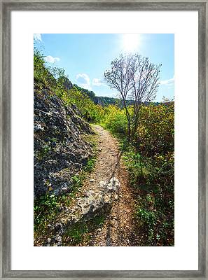 Solo Hiking Framed Print