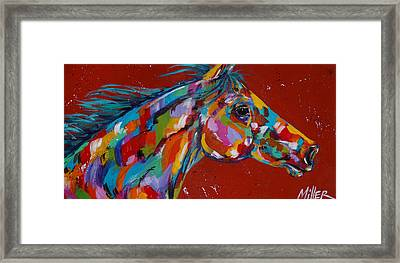 Solo Framed Print by Tracy Miller