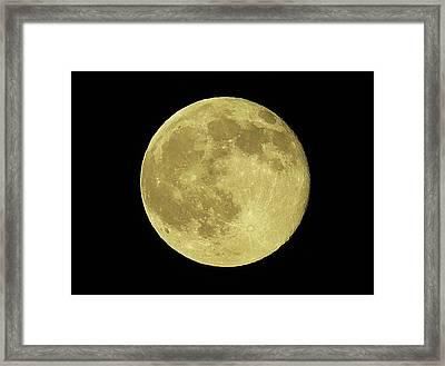 Solstice Moon Framed Print