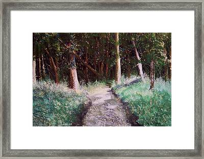 Solveigs Journey Framed Print