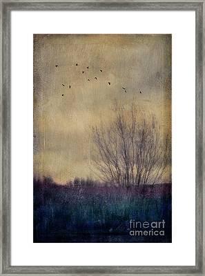 Somber Framed Print