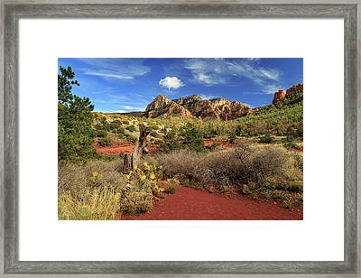 Framed Print featuring the photograph Some Cactus In Sedona by James Eddy