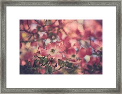Some Souls Just Shine Framed Print by Laurie Search