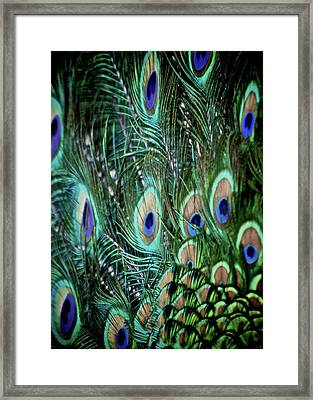 Someone Is Watching You Framed Print by Odd Jeppesen