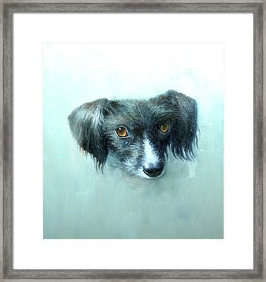 Someones Pet Framed Print