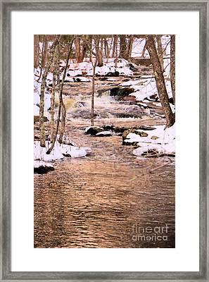 Somesville Brook Framed Print by Elizabeth Dow