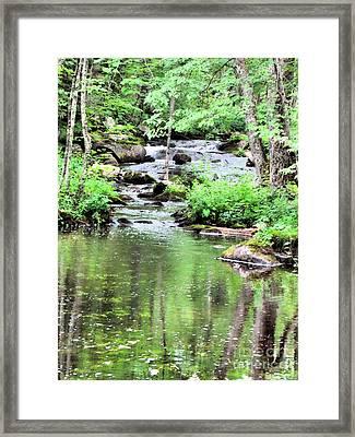Somesville Stream  Framed Print by Elizabeth Dow