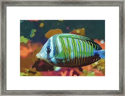 Something Fishy Framed Print by Deborah MacQuarrie-Selib