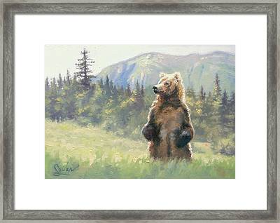 Something In The Air- Alaskan Brown Bear Framed Print by Larry Seiler