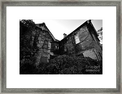 Something In The Window Framed Print by David Lee Thompson