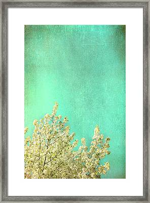 Something Special Framed Print by Kevin Bergen