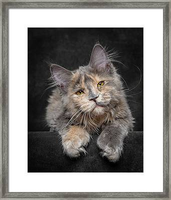 Something Special Framed Print