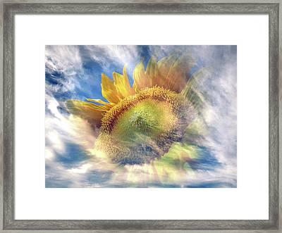 Something Summery Framed Print